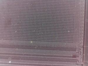 Digital microscope image of memory chip