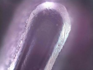 Embossed number of credit card viewed under microscope. ioLight pocket microscope